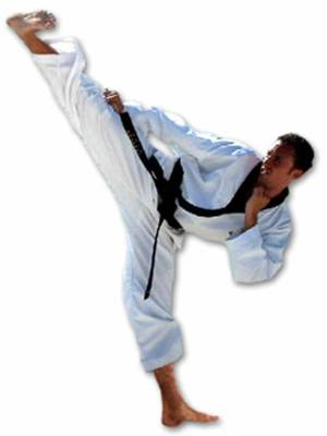 Instructor: Jason Rogers 2nd Dan (High Side Kick)