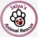 Jaiya's Animal Rescue (Shanghai)