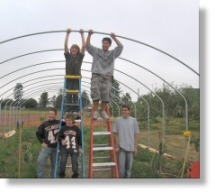 kids___greenhouse__Fd_Roots_Tillmk.jpg
